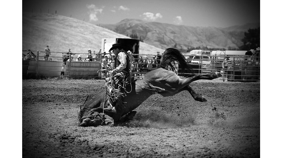 HORSE RIDE 3