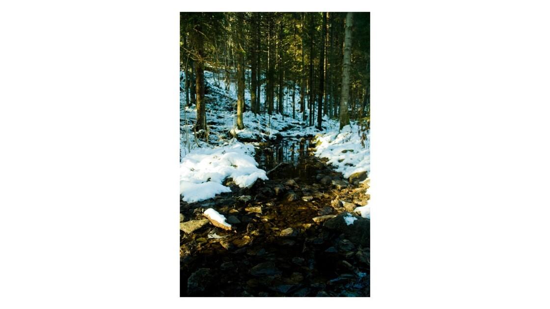 Ruisseau dans la Nordmarka