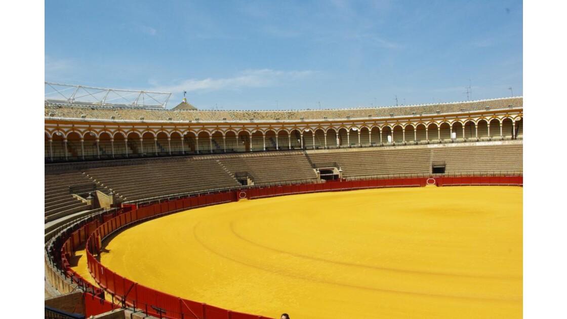 Arenes de Seville
