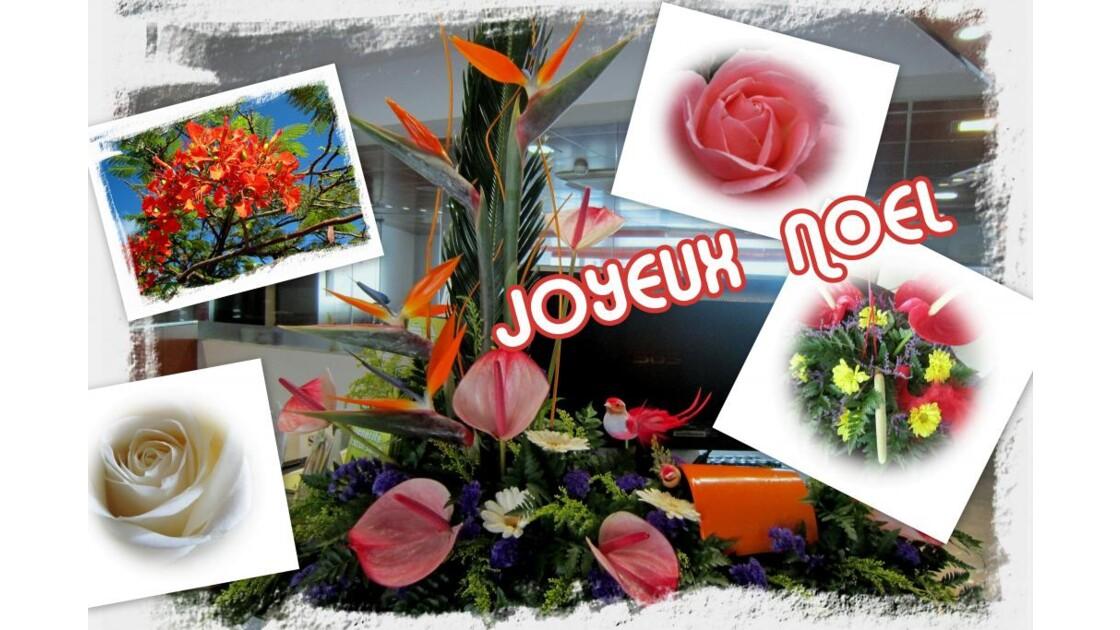 JOYEUX NOEL A TOUS.jpg