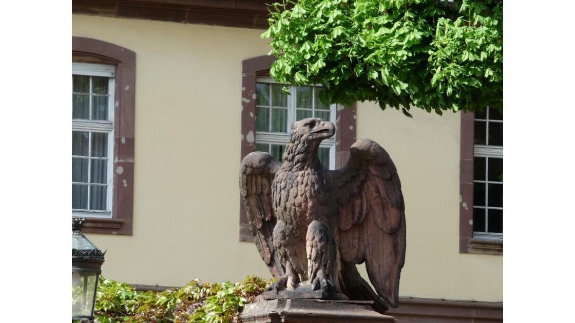 l'aigle...gris