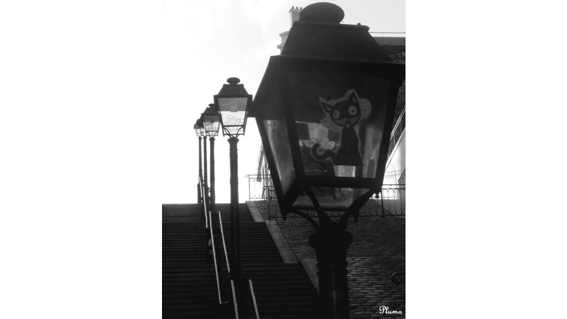 Vers_la_lumière...