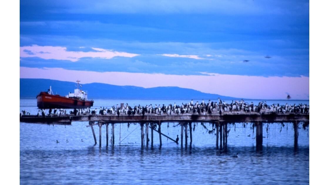 Punta Arenas - le port