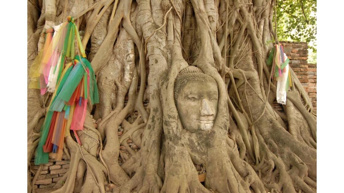 Thailande Paradise . . .