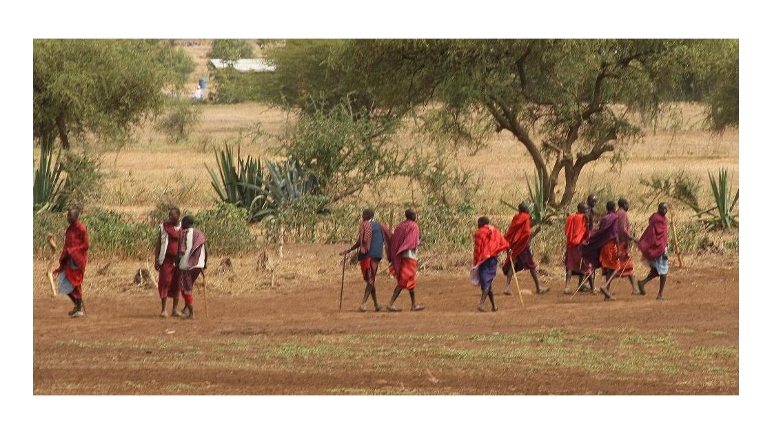 Bergers Masaï