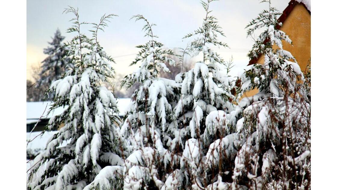 neigeà Quincampoix -b