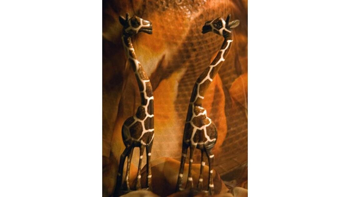Girafes1288.jpg