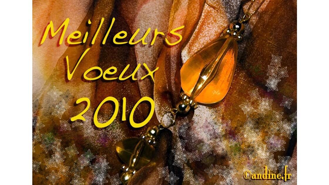 MeilleursVoeux2010.jpg