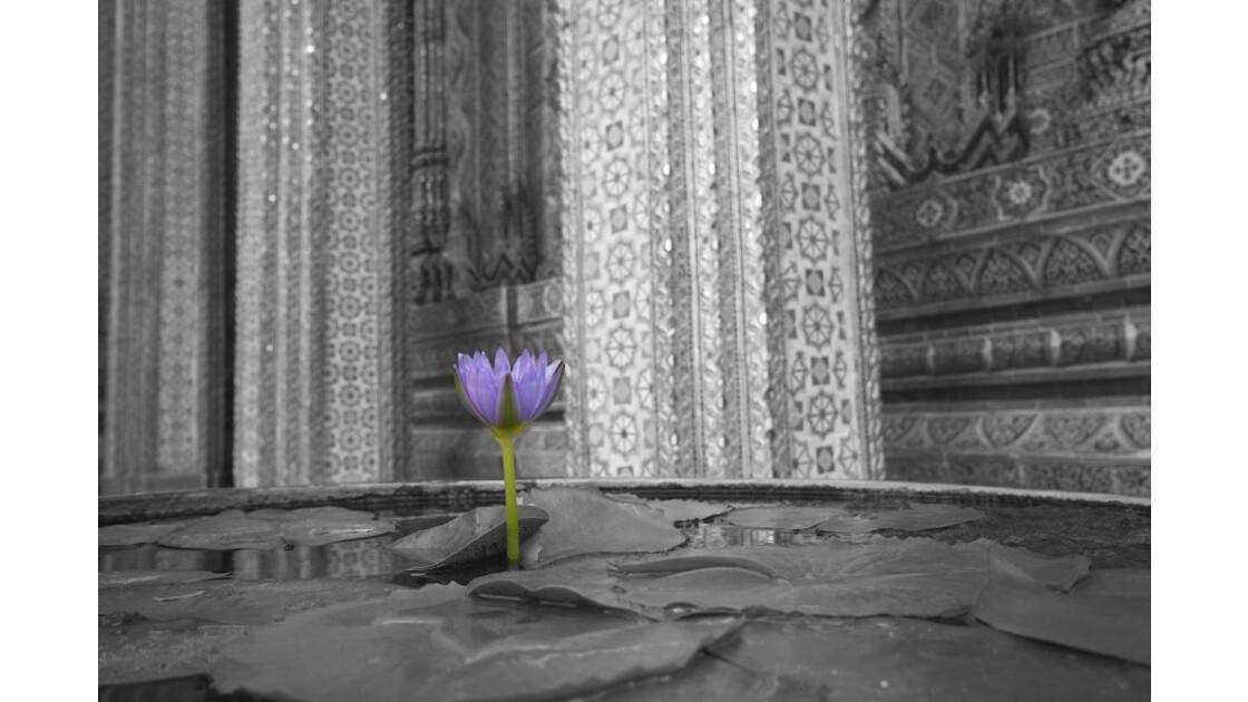 Fleur Unique!