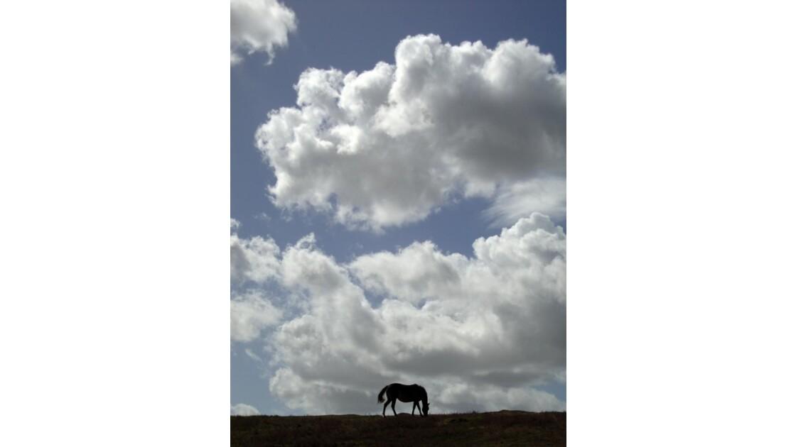 Ombre sur nuages