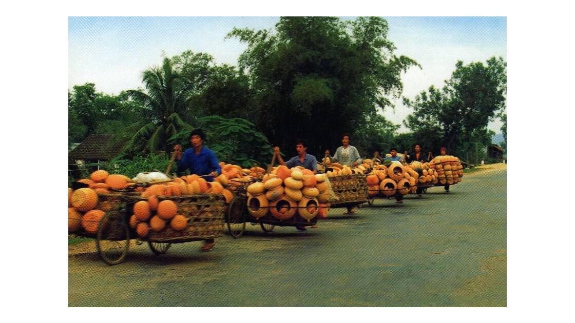 transport de potiches de terre cuite