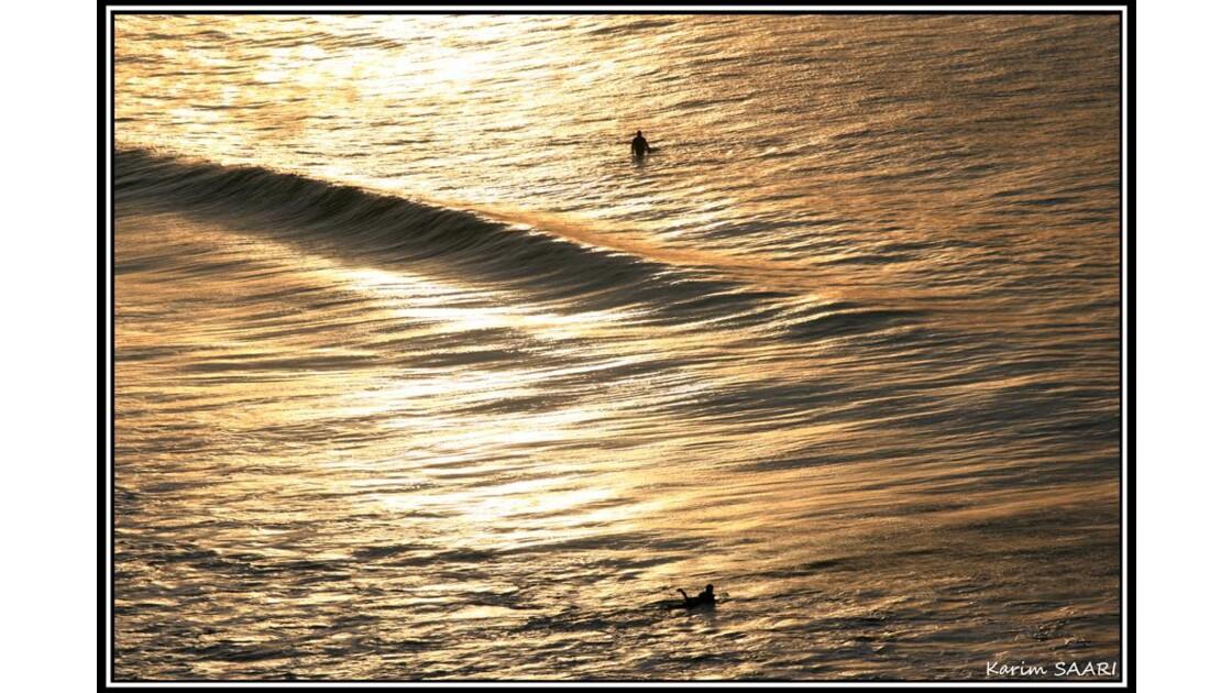 golden_surfer.jpg