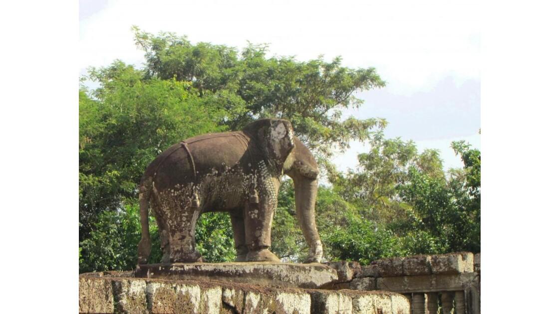 Elephant sacré