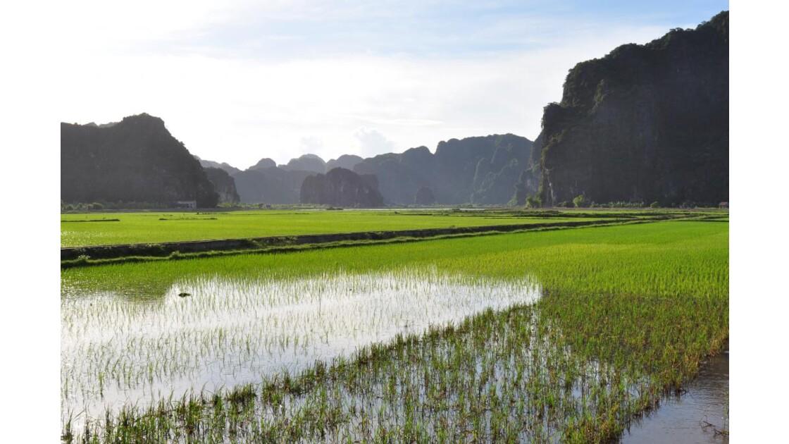 Baie d'Halong terrestre - Ninh Binh