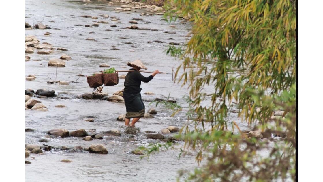 Laos-Femme Hmong en route vers le marché
