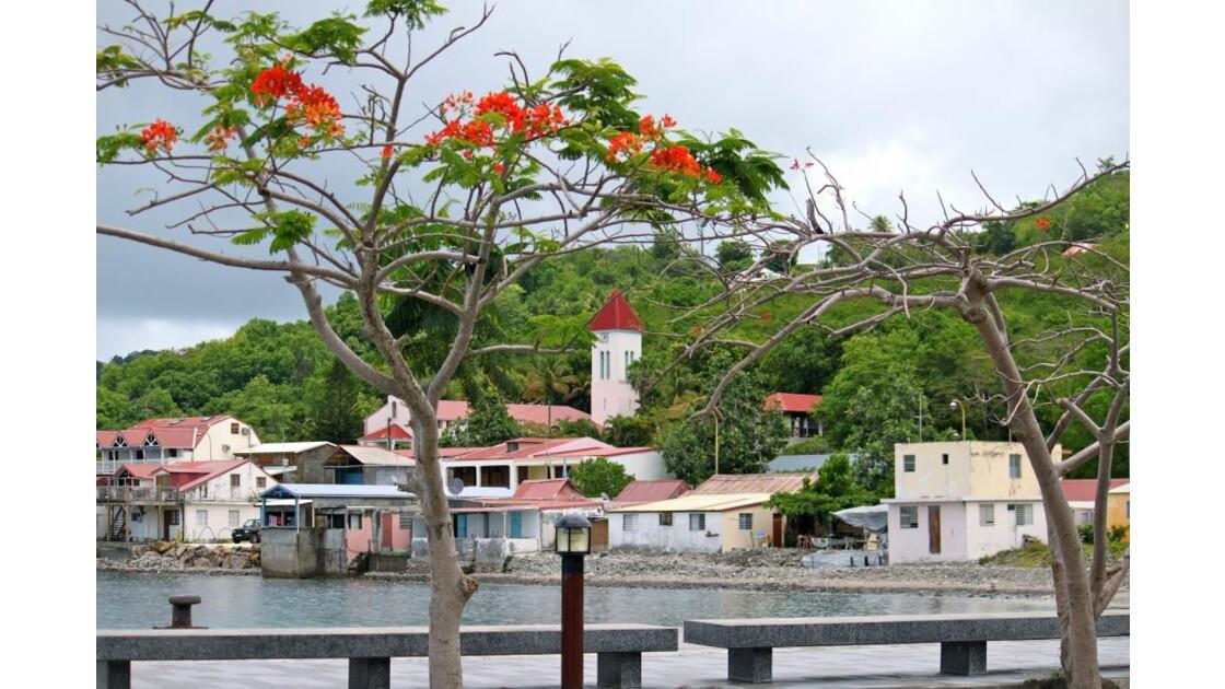 DESHAIES : le village vu du port