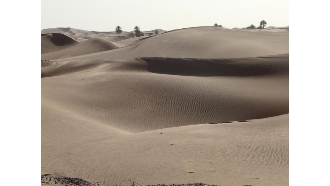 mer de dunes