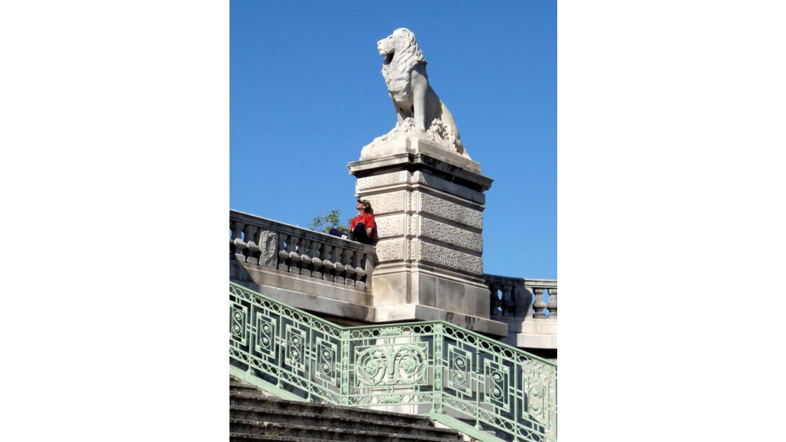 Lion de la Gare Saint Charles