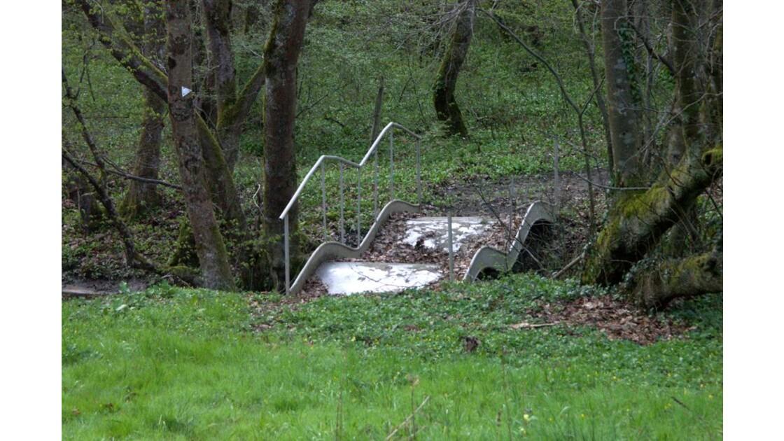 Pont en sous-bois