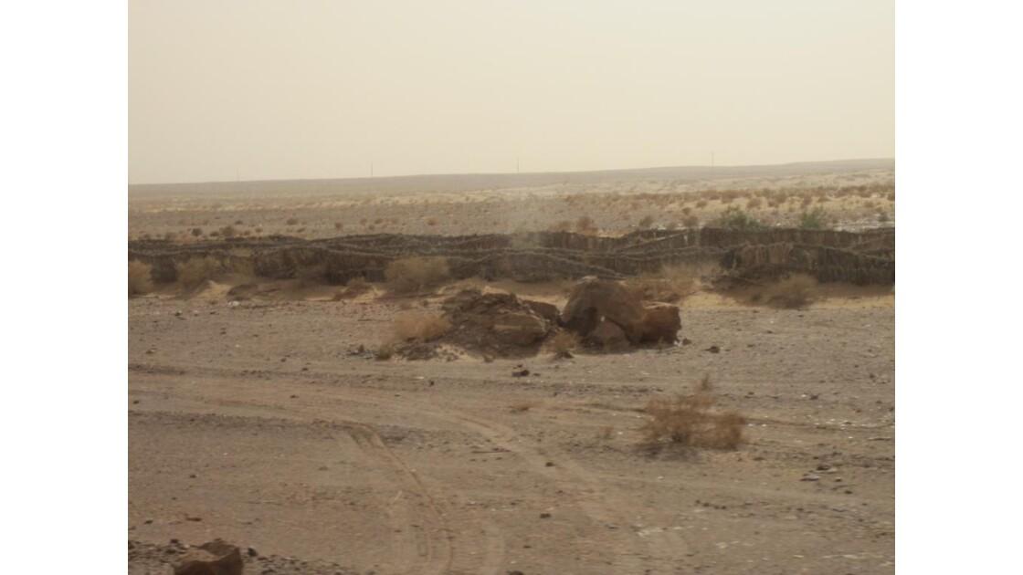 vent de sable dans le désert