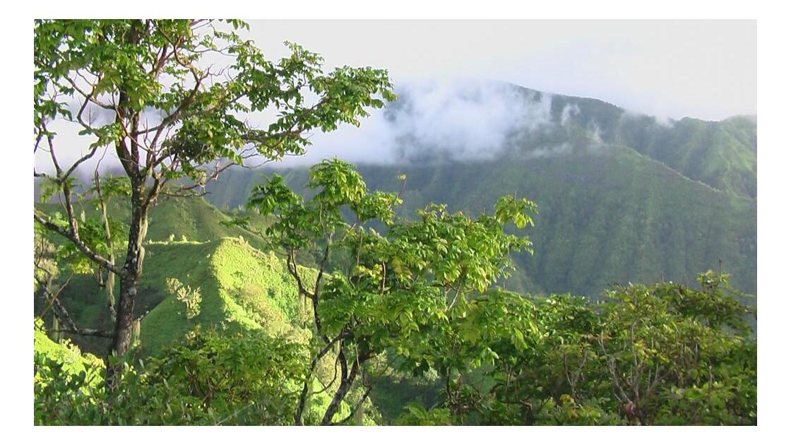 Les monts de Aorai.JPG