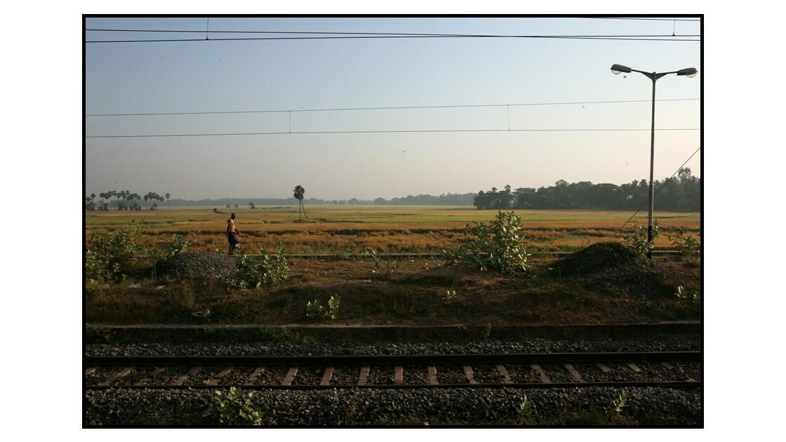 Vue du train aux alentours de Puri