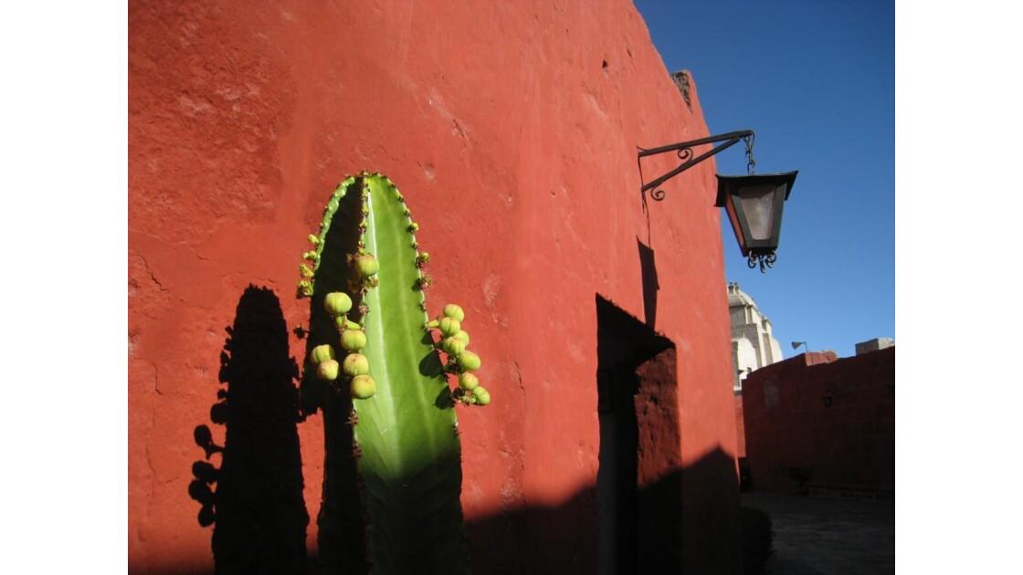 Pérou Santa Catalina.JPG