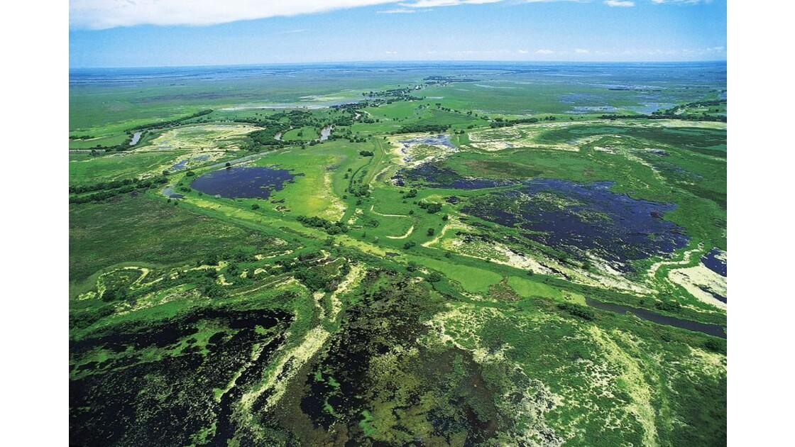 Réserve Biosphère Pantanos de Centla