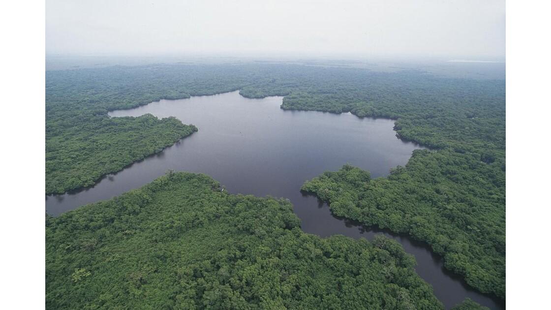 Réserve Biosphère Pantanos_de_Centla
