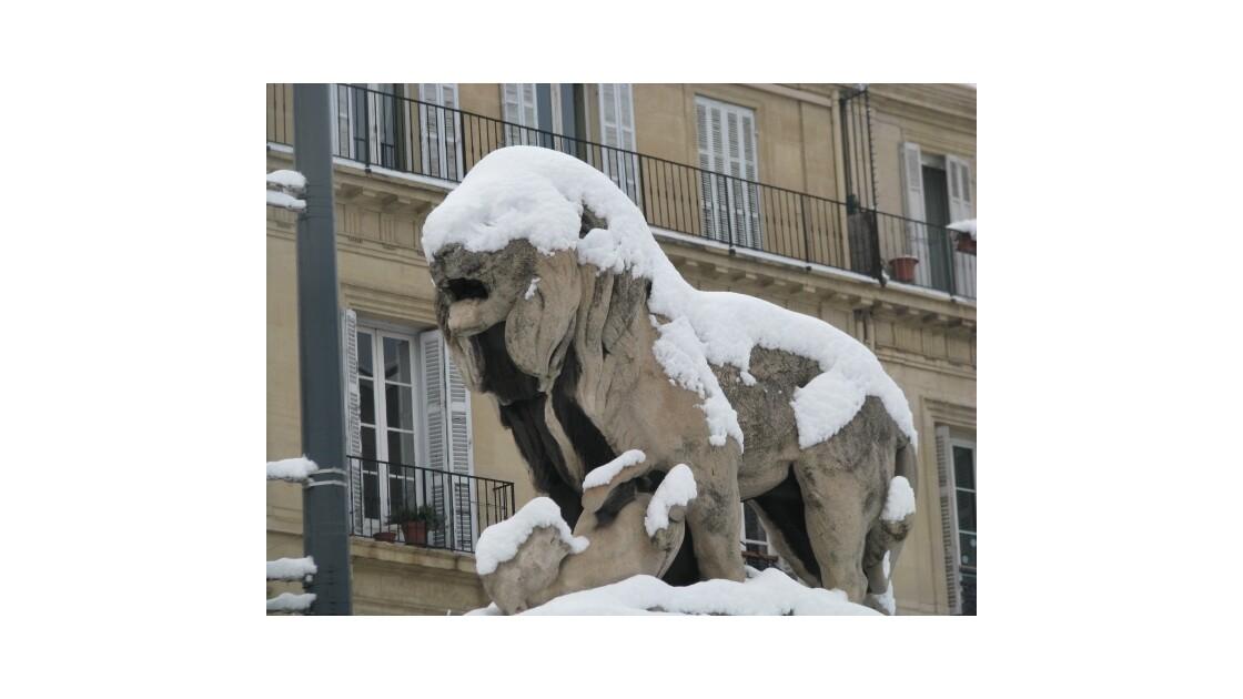 Palais Longchamp lion frileux