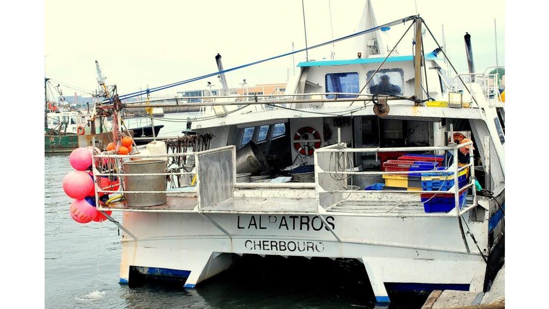 """""""l'Albatros s'amarre"""""""