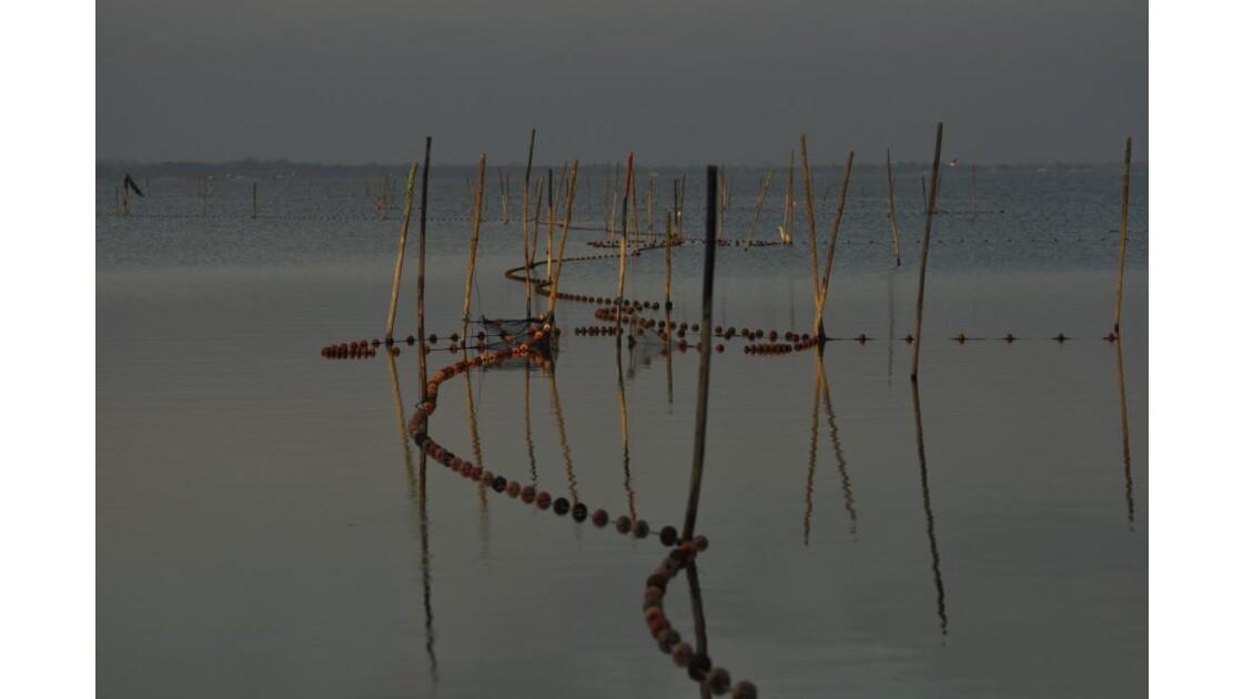 _DSC1012.JPG-Filets de pêche