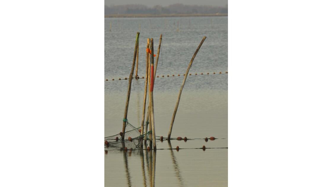 _DSC1036.JPG-Filets de pêche...