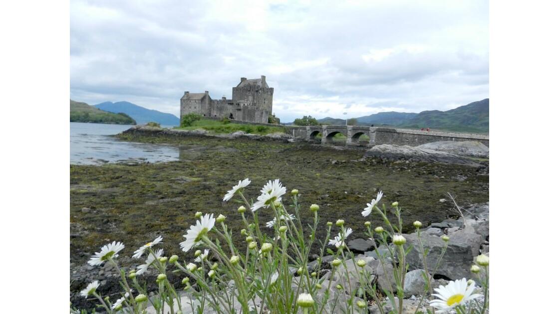 Ecosse Eilean Donan Castle.JPG