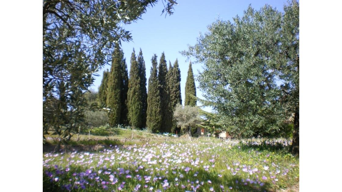 jardin de la Pepiole