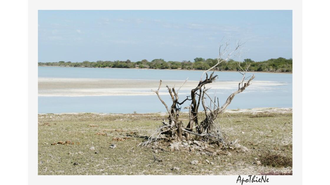 le lac de Tsimanampetsotsa