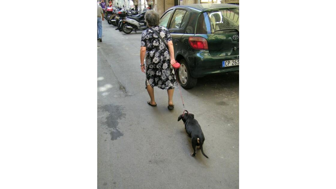 Quelle vie de chien !!