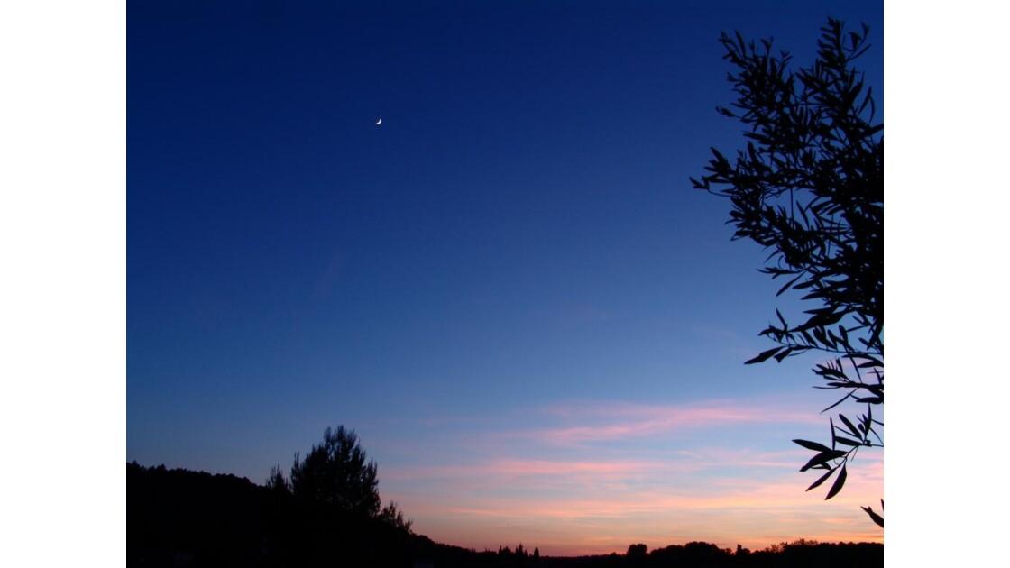 """""""Bleu Nuit"""".JPG"""