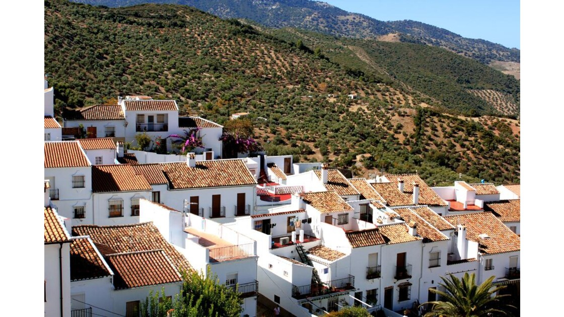 les toits ......et  terrasses