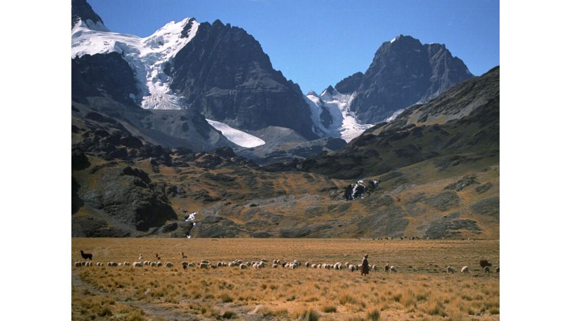 Bolivie - cordillère royale.jpg