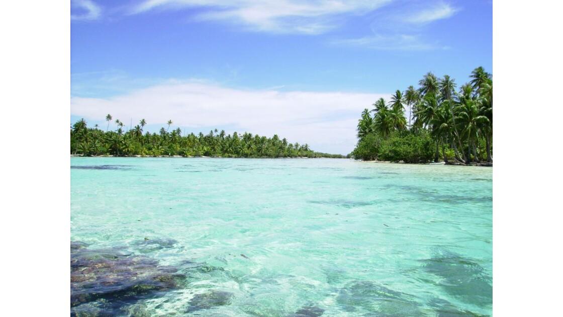 jardin  de corail a Bora Bora