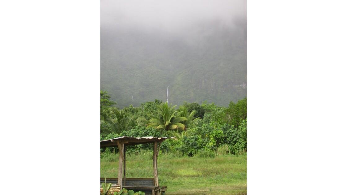 arret de bus en polynesie