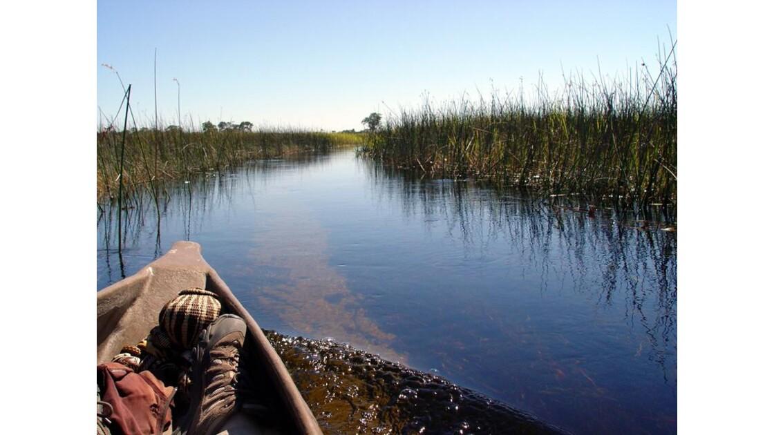 en Mokoro dans le delta del'Okavango6