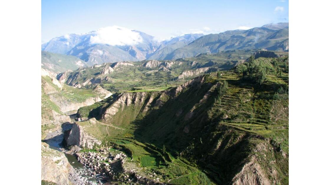 vallée du Colca - Pérou