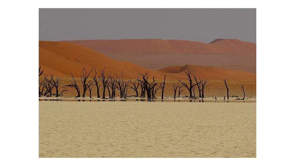 Dead Vlei - Désert du Namib.jpg
