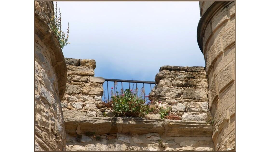 Le château, détail extérieur_P6019086.j
