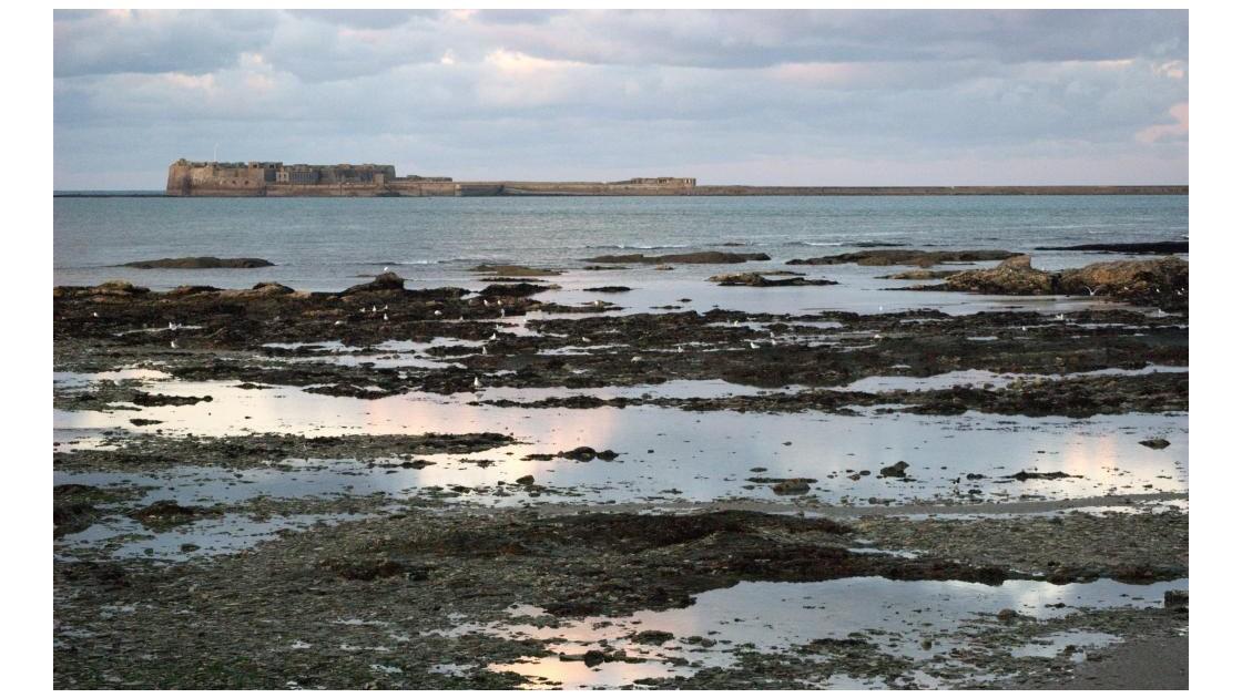Fortin au large,Collignon/Cherbourg