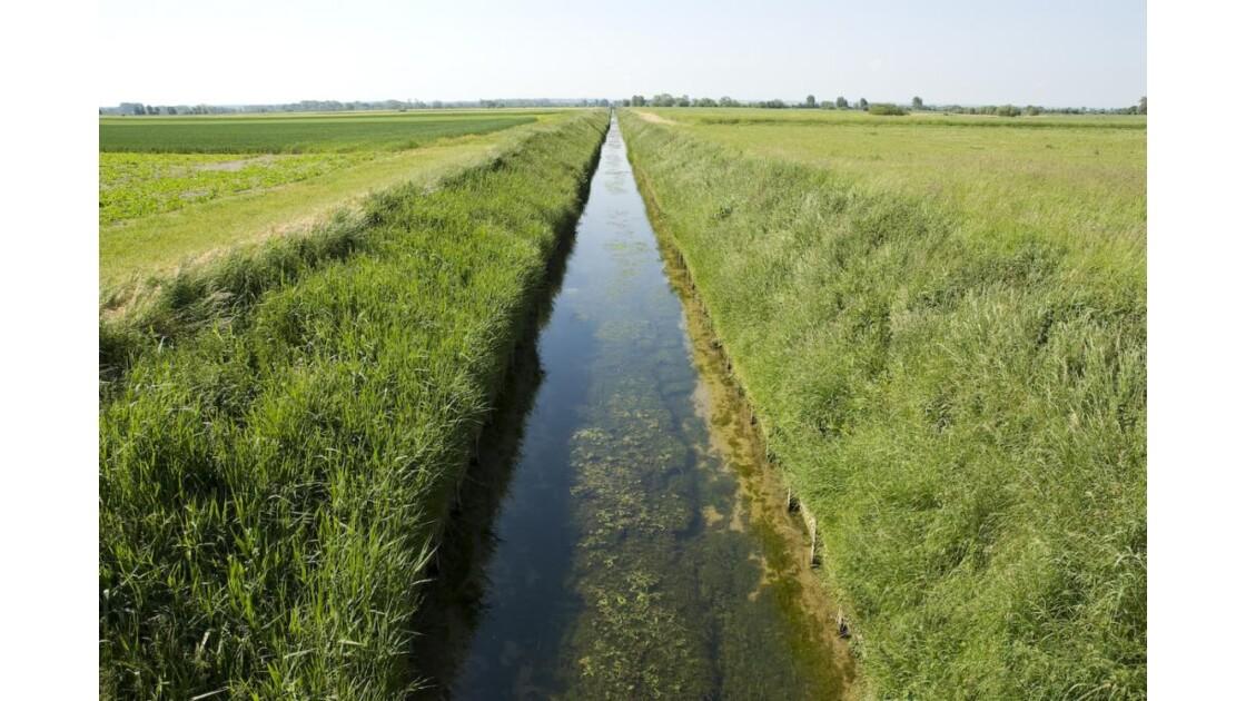 Canal de Cayeux