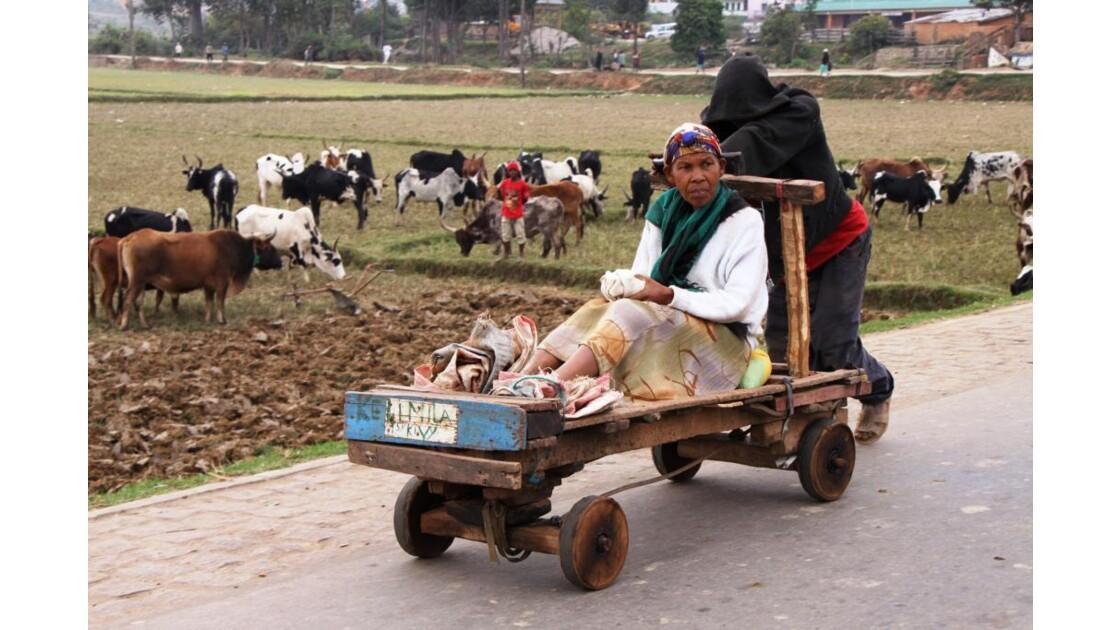 chariot Ambositra