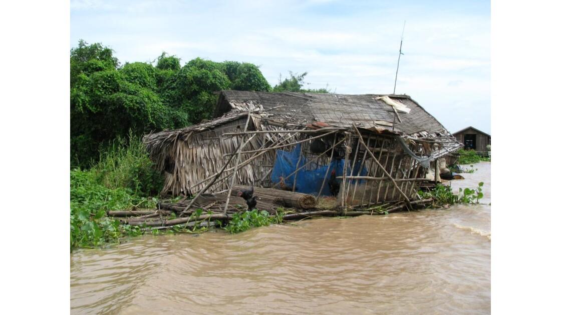 Lac Tonlé Sap le poulailler